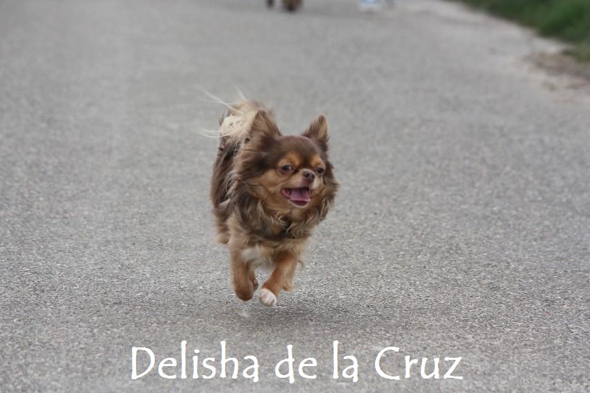 Delisha_8717.jpg