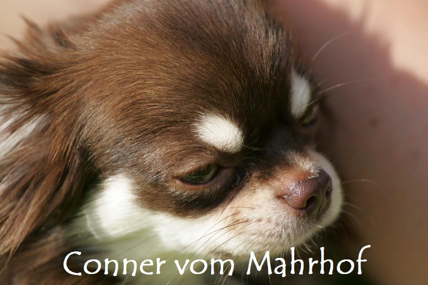 conner3L3243.jpg